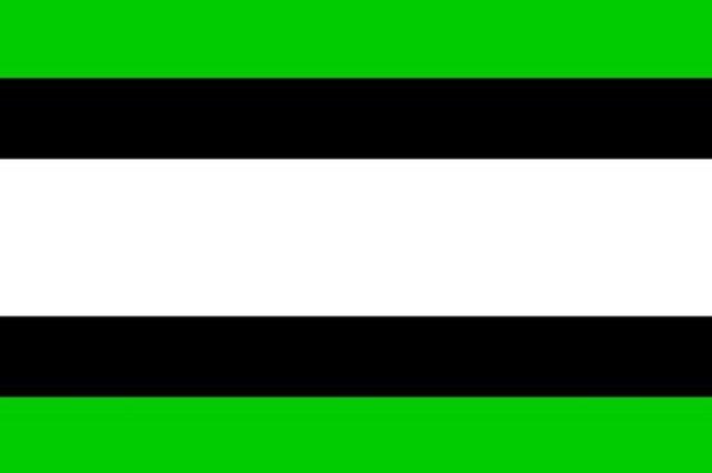 vlag van de oud gemeente heino